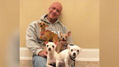 Hombre salvado por un chihuahua inicia a una misión de rescate de más de 50 perros pequeños