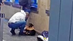 Hombre bondadoso se quita la camisa y se la da a un perro callejero que temblaba de frío