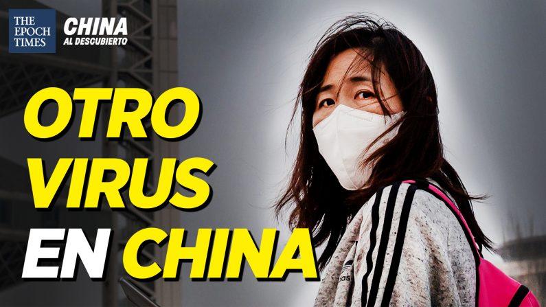 Brote de norovirus chino; Argentinos rechazan ser la granja porcina de China | China al Descubierto