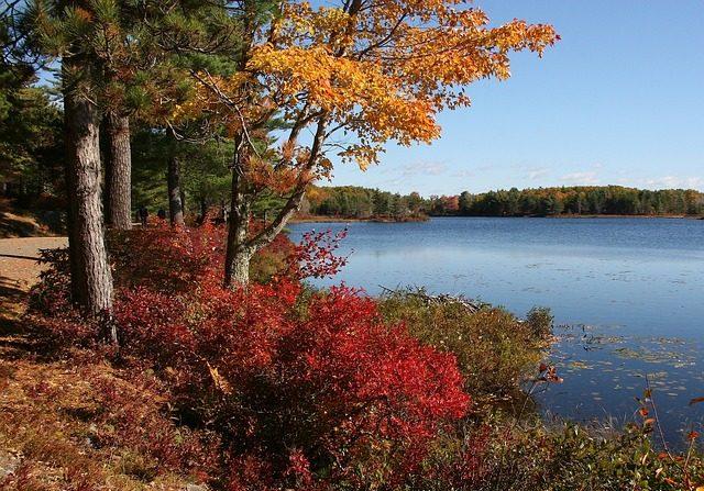 Parque Nacional Acadia, Maine, EE.UU. (Pixabay/ ID 12019)