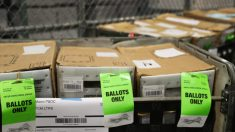 Más de 1 millón de boletas por correo serán rechazadas de acuerdo a predicción de un estudio
