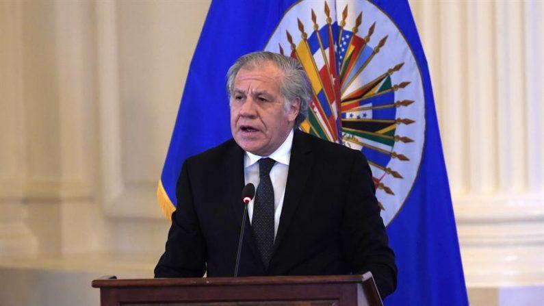 El secretario general de la Organización de Estados Americanos (OEA), el uruguayo Luis Almagro. EFE/ Lenin Nolly/Archivo