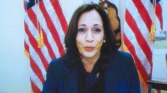 Kamala Harris reanudará eventos de la campaña presenciales en Florida