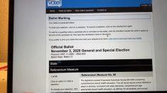 Poca seguridad online permite cancelar votos por correo de otros votantes en algunos estados
