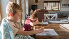 Cuando la educación en casa sale mal
