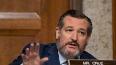 Los republicanos parecen tener suficientes votos para confirmar a Amy Coney Barrett, dice Ted Cruz