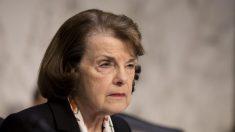 Demócratas del Senado solicitan formalmente un retraso en la confirmación de la Corte Suprema