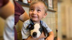 Niño nacido con labio leporino adopta cachorro con la misma condición en un refugio de Michigan