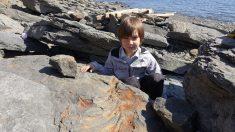 Niño ruso encuentra un gigantesco dinosaurio de hace 250 millones de años mientras jugaba con rocas