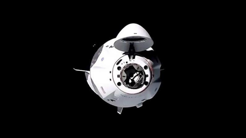 La cápsula espacial que la compañía privada SpaceX envió en su primera misión operativa tripulada se acopló con éxito en la madrugada del 17 de noviembre de 2020 a la Estación Espacial Internacional (EEI), informó la agencia estadounidense (NASA) en su cuenta de Twitter. EFE/EPA/NASA