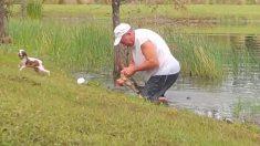 Hombre jubilado de Florida rescata a su cachorro de las fauces de un caimán