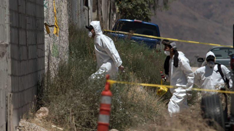 El personal forense llega a la propiedad donde se encontró una fosa común, en el este de Tijuana, México, el 17 de agosto de 2017. (Foto de GUILLERMO ARIAS / AFP a través de Getty Images)