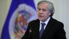"""""""La justicia ha fracasado en Venezuela"""": Luis Almagro"""