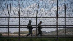 Capturan a norcoreano que cruzó al Sur a través de la zona desmilitarizada