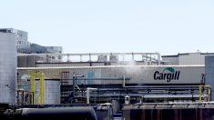 Empresa estadounidense Cargill anuncia cese de operaciones en Venezuela
