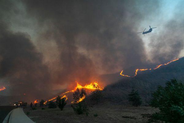 Los bomberos prendieron fuego por la espalda para proteger los hogares y tratar de contener el incendio Blue Ridge el 27 de octubre de 2020 en Chino Hills, California. (Foto de David McNew / Getty Images)