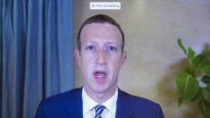 """Facebook eliminó el grupo """"Stop the Steal"""" para prevenir la """"violencia o disturbios civiles"""": Zuckerberg"""