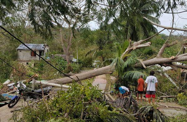 Los lugareños observan un árbol caído luego del paso del huracán Iota en San Andrés, Colombia, el 17 de noviembre de 2020. (Foto de LIANA FLOREZ / AFP a través de Getty Images)
