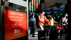 Millones de estadounidenses viajan por Día de Acción de Gracias pese a covid-19