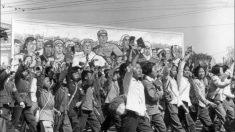 Una repetición de la revolución cultural china en las elecciones de 2020