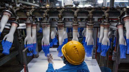 El mayor productor mundial de guantes de látex cerrará parte de sus fábricas por brote de COVID-19