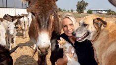 Mujer británica administra un santuario en Israel para rescatar burros de trabajo maltratados