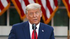 Trump aún tiene varios caminos constitucionales hacia la victoria, dice Alan Dershowitz