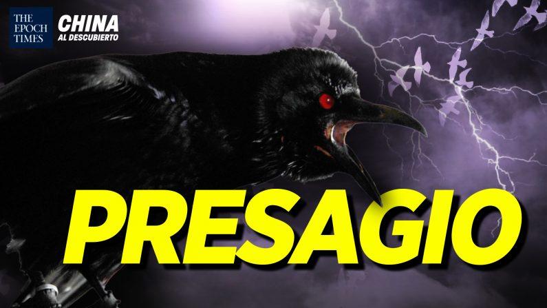 Miles de cuervos aparecen en China; Exclusivo: Hacker chino revela espionaje. (China al Descubierto/The Epoch Times en Español)