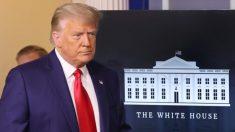 """""""Dormidos en sus laureles"""": Asesor de Trump dice que DOJ y FBI deben investigar el presunto fraude electoral"""