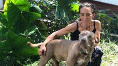Elogian a refugio de animales de Florida por ayudar a una dueña a reunirse con su perro sordo