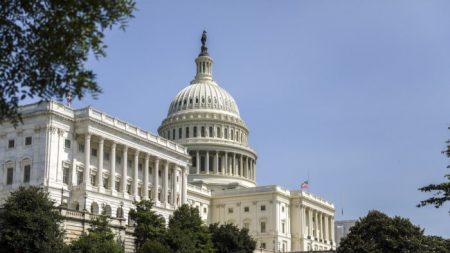 Republicanos de la Cámara piden que el Congreso examine la integridad de las elecciones 2020