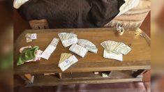 Remodelador de casas encuentra USD 10,000 escondidos en una sala y los devuelve al antiguo propietario