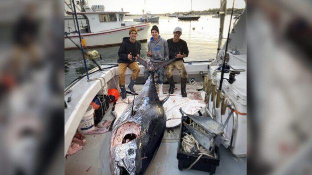 Pescadores adolescentes atrapan a un atún de aleta azul de 10 pies que pesa más de 1000 libras