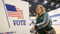 Exsecretaria de Estado de Michigan pide auditoría sobre resultados de elecciones por demanda de fraude electoral