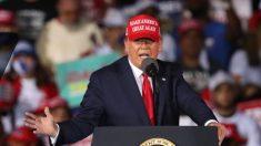 Trump se dirige a Georgia para impulsar las campañas de Kelly Loeffler y David Perdue
