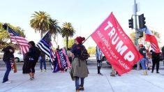 """McEnany predice una participación """"bastante grande"""" en las marchas pro-Trump en DC"""