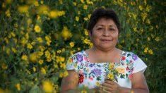 Indígena mexicana obtuvo el Premio Goldman 2020 por su lucha contra Monsanto