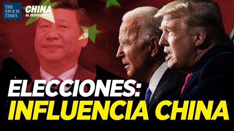 Elecciones: Cómo influyeron grupos pro-PCCh; Científicos chinos se van de EEUU. (China al Descubierto/The Epoch Times en Español)