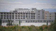 Congresistas de EE.UU. cuestionan a Intel y Nvidia del uso de sus chips para abusos de DD.HH. en Xinjiang