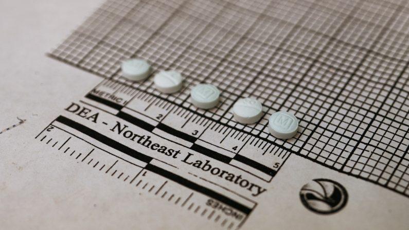 Tabletas que se sospecha son fentanilo se colocan en un gráfico para medir su tamaño en el Laboratorio Regional Noreste de la Administración de Control de Drogas el 8 de octubre de 2019 en Nueva York. (DON EMMERT/AFP a través de Getty Images)