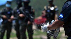 Honduras incauta de avioneta cargada con cocaína procedente de Venezuela
