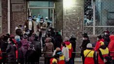 Ciudad china detecta aumento de casos de COVID-19 y ordena que todos sus residentes se hagan pruebas