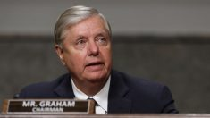 """Georgia tiene ahora un """"proceso confiable"""" para realizar auditoría de firmas de elecciones: Lindsey Graham"""