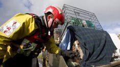 Bombero rescata a 46 perros de una casa en llamas el día de Acción de Gracias