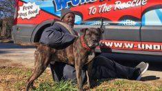 Hombre sin hogar arriesga su vida para salvar 6 perros y 10 gatos de incendio en refugio de animales