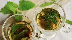 Beber té regularmente mejora la función cerebral