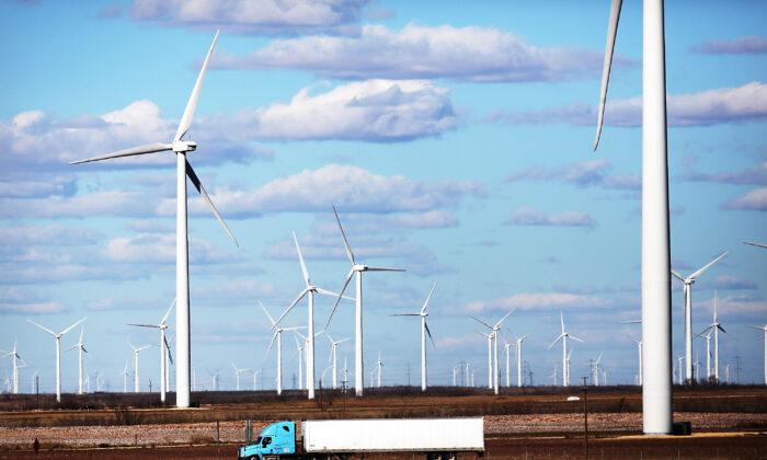 Turbinas de viento son vistas en un parque eólico en Colorado City, Texas, el 21 de enero de 2016. (Spencer Platt/Getty Images)