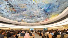 """El PCCh en Consejo de DDHH de la ONU es como """"Drácula a cargo del banco de sangre"""", dice parlamentario"""