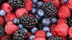 Bayas: un alimento antidiabético de primera calidad