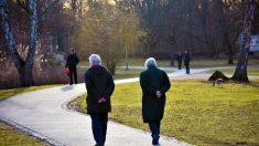 El ejercicio y la proteína de suero retardan pérdida de masa ósea y muscular relacionada con la edad